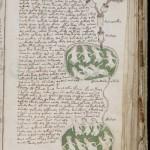 ヴォイニッチ手稿(写本) どの言語にも属さない謎の文字!