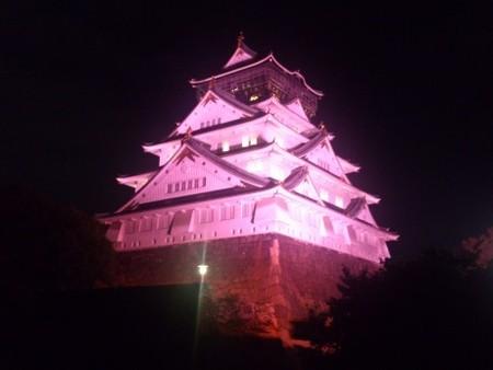 20131001 00000064 minkei 000 1 view 世界中のランドマークがピンク色に染まる!理由はピンクリボンキャンペーン!