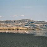 ナトロン湖、生き物が石化する神秘の湖!