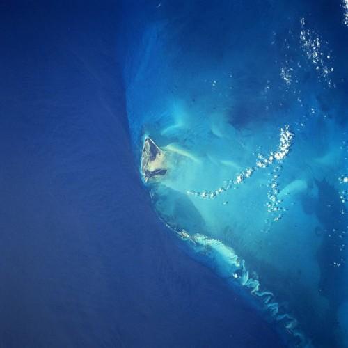 600px Bimini island 500x500 ビミニ・ロード!フロリダ沖に眠るのは謎の海底神殿か?
