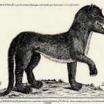 ジェヴォーダンの獣とは?かつてフランスで発生した獣害事件。