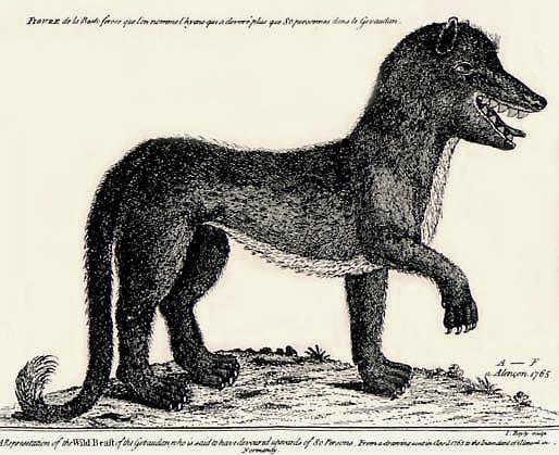 Gevaudanwolf ジェヴォーダンの獣とは?かつてフランスで発生した獣害事件。