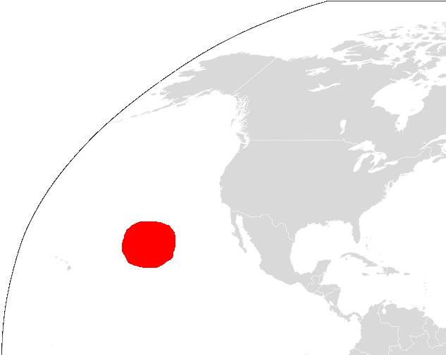 WHITE 1 ホホジロザメが大量に生息する海域、ホホジロザメカフェ!