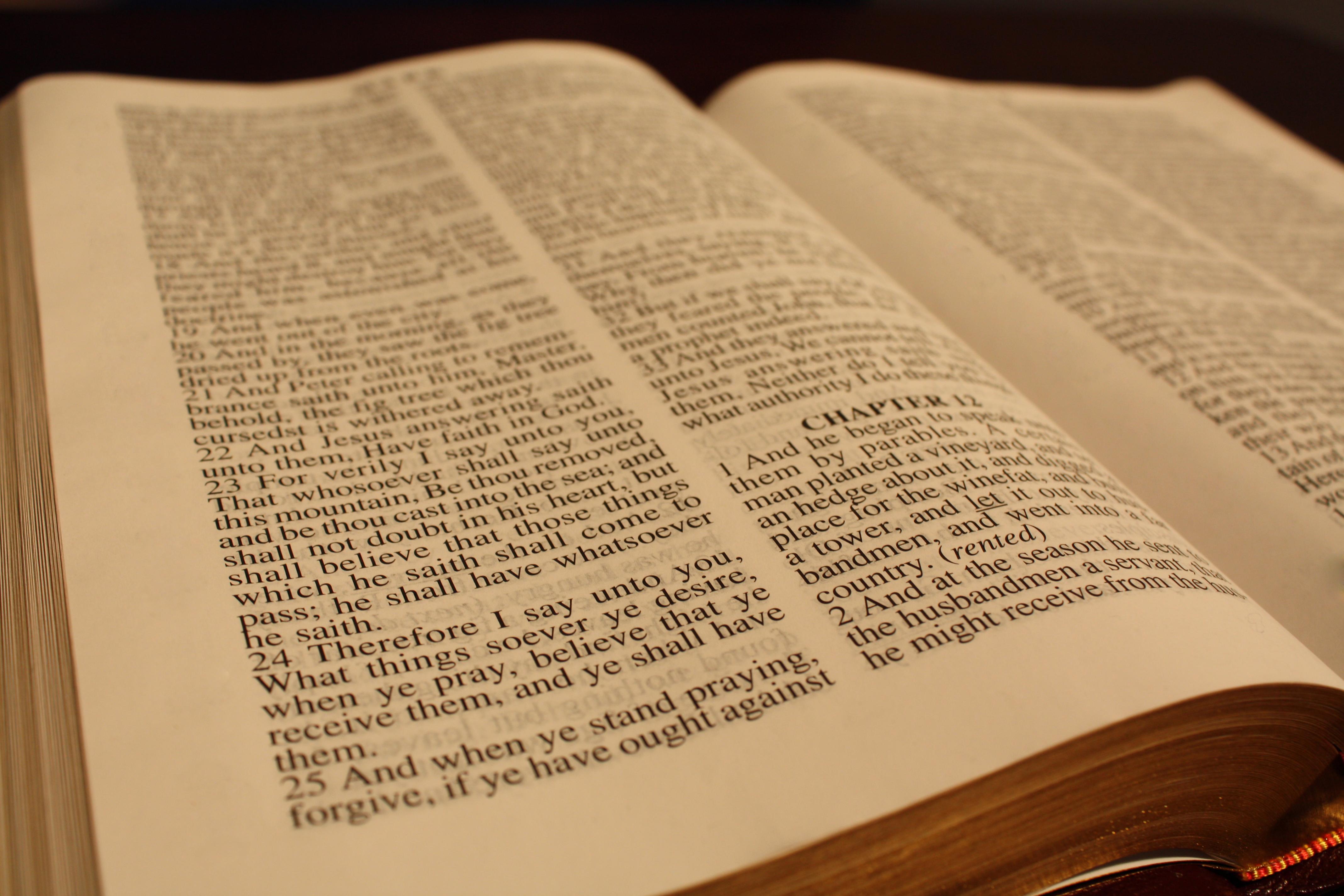 bible copy コストコで聖書を「フィクション」と分類して騒動に。背景に見える現代における聖書の位置づけ。