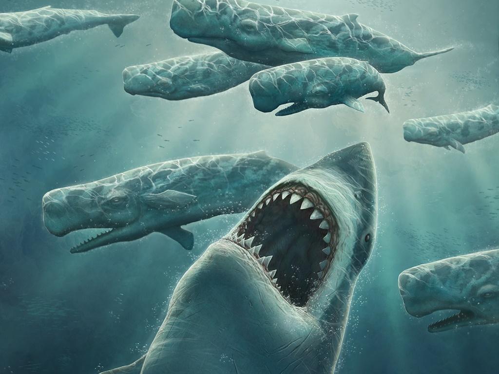 メガロドン、今なお生存が噂される、かつて海を支配した最強の巨大ザメ!