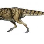 タルボサウルス!アジア最大の獣脚類!
