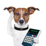 犬税誕生へ、大阪府泉佐野市で予算成立。
