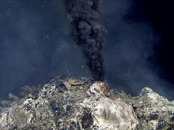 new deep sea vents found mexico close up 53782 600x450 エウロパで高さ200kmの噴水が確認される!生命が存在する可能性も指摘される!
