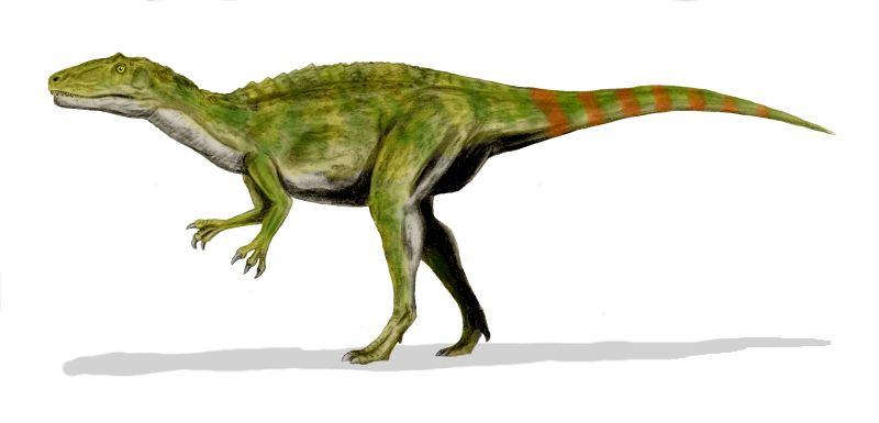 0d40a5e4a645fc6b96e767d64ac0878e1 北海道で新種の恐竜が発見された可能性!ハドロサウルスの全身骨格か。
