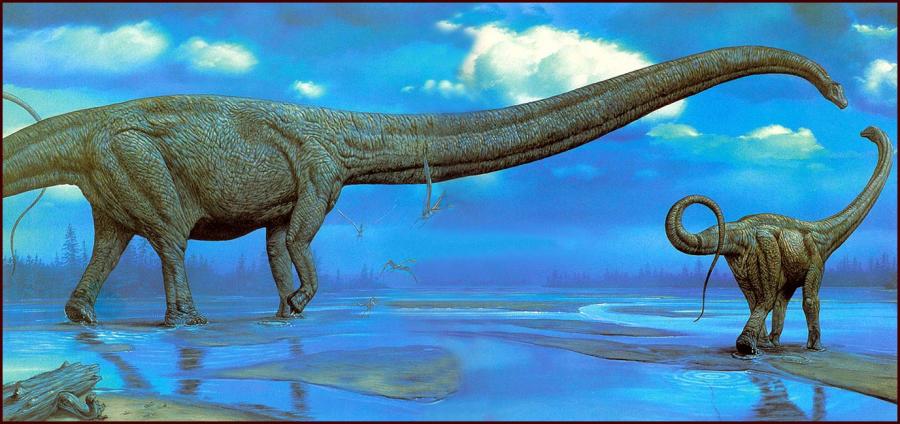 2e80dd3a23e20d259d1039c194757783 900x424 北海道で新種の恐竜が発見された可能性!ハドロサウルスの全身骨格か。