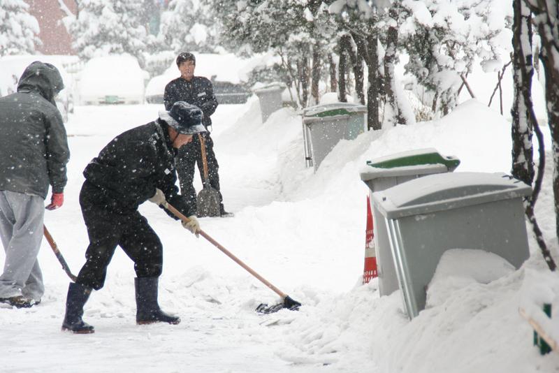 800px Winter snow in Seoul South Korea 高濃度酸性雪がソウルに降る!オレンジやワインに匹敵する酸性度!