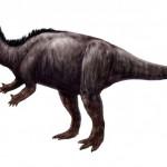 北海道で新種の恐竜が発見された可能性!ハドロサウルスの全身骨格か。