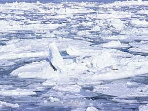 c2c587575b95df070ad9726b66ae1e97 北海道に流氷が到着!
