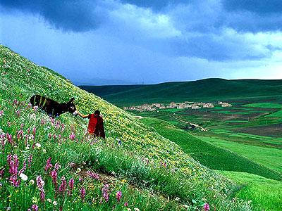 shangri la view 3 シャングリラ、チベットの理想郷。