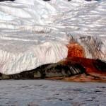 血の滝!南極で見られる詳細の現象!