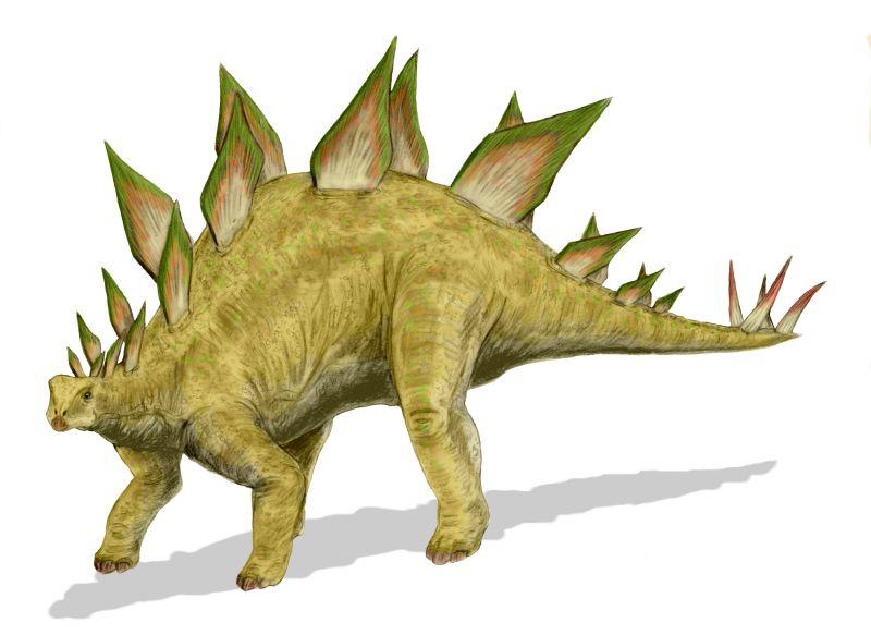 Stegosaurus BW 恐竜壁画、古代の遺物に恐竜と見られる絵が。