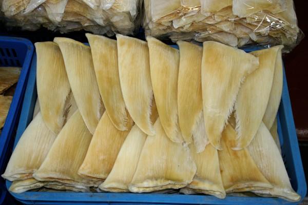 shark fins market china 600x400 サメの乱獲防止へ、4月からヒルトン系列ホテルでのフカヒレ販売中止。