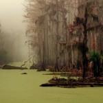 マンチャック・スワンプス、ルイジアナの幽霊沼。
