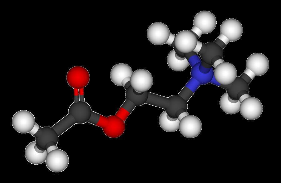Acetylcholine 3D balls 900x587 タバコを止められない理由はニコチンと脳にあり!禁煙の効果。
