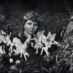 妖精の写真、捏造判明も残された可能性。