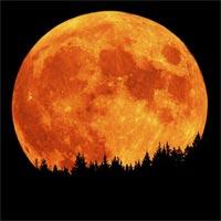 orange moon 月誕生の謎、元々は地球と1つだった可能性。