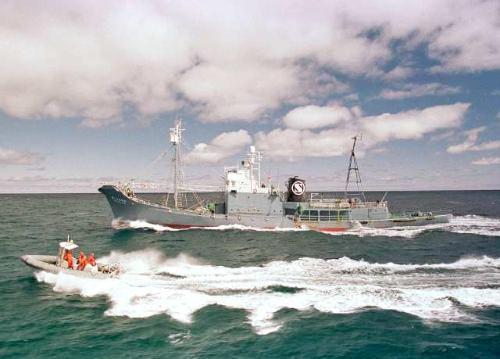 0d40a5e4a645fc6b96e767d64ac0878e 調査捕鯨訴訟で日本が敗訴。南極での捕鯨は商業目的であるという判決が下される。