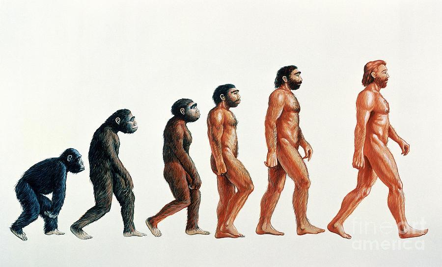 human evolution david gifford ミトコンドリア・イヴ理論、未だ明かされない人類のルーツ。