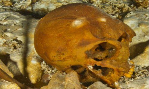 naia yucatan 12000年前の頭蓋骨が発見される!保存状態は良好。