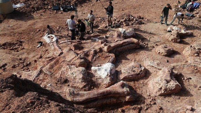 upl53776d8430566 世界最大の恐竜の化石が発見される!正体はティタノサウルス!