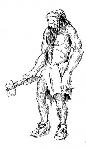 bushman 291x500 バサジュアン、スペインに伝わる獣人。