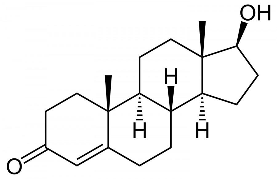 TestosteroneJPG 900x582 人が浮気をする理由。性格だけではない生物としての浮気。