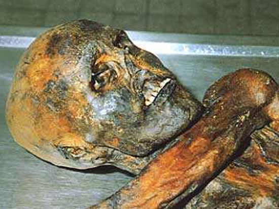 otzi 6 エッツィ、5300年前の不思議なミイラ。