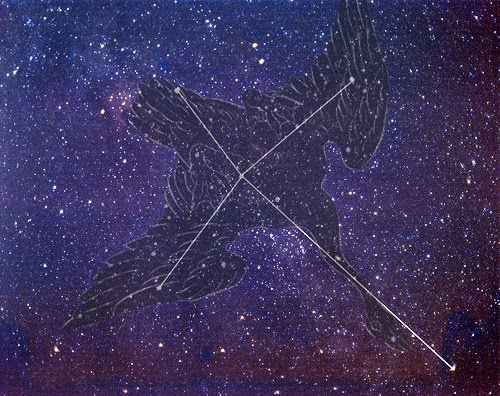 cygnus northern cross no text はくちょう座κ流星群!2014年は8月18日が見ごろも観測条件は不良。