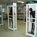 シリラート死体博物館!日本人にも大人気の観光地!