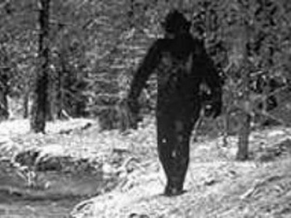 yeti22 アルマスの伝承。ロシア版の雪男。