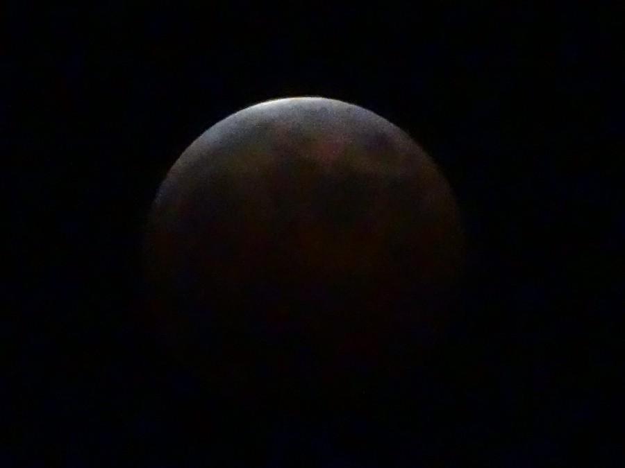DSC00733 900x675 皆既月食が3年ぶりに観測される!