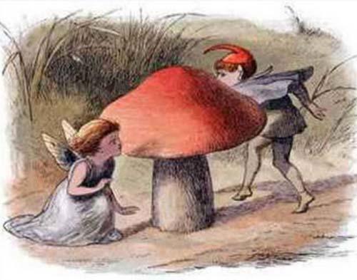VBX0AVt アイスランド最高裁がエルフの存在を認める?文化の中に残る妖精の存在。