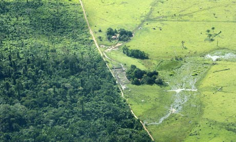 Aerial view of cattle far 001 熱帯雨林の乱開発。肉やエタノールの為に。